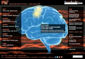 Stroke alters muscle synergies in the motor cortex