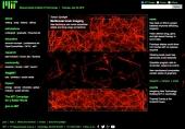 Multiscale brain imaging